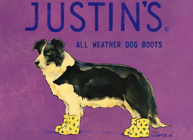 Justin's All Weather Dog Boots