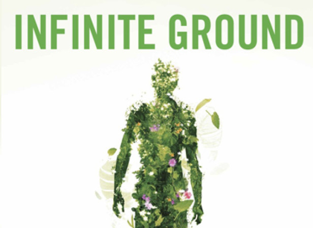 Infinite Ground cover1.jpg