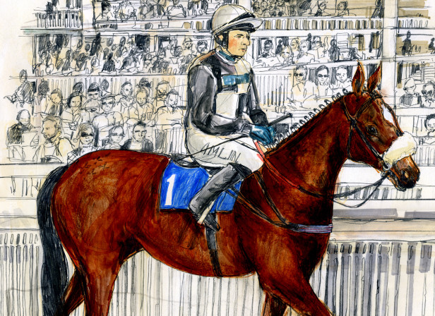 I Hear A Symphony Racehorse / Welsh National Opera