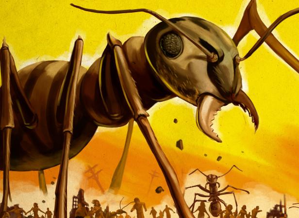 Atlanta Magazine Crazy Ants