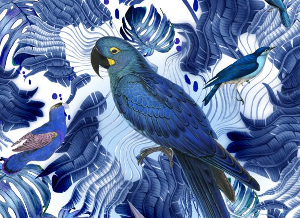 Blue Bird Scarf