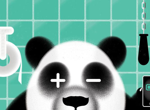 panda poo2.jpg