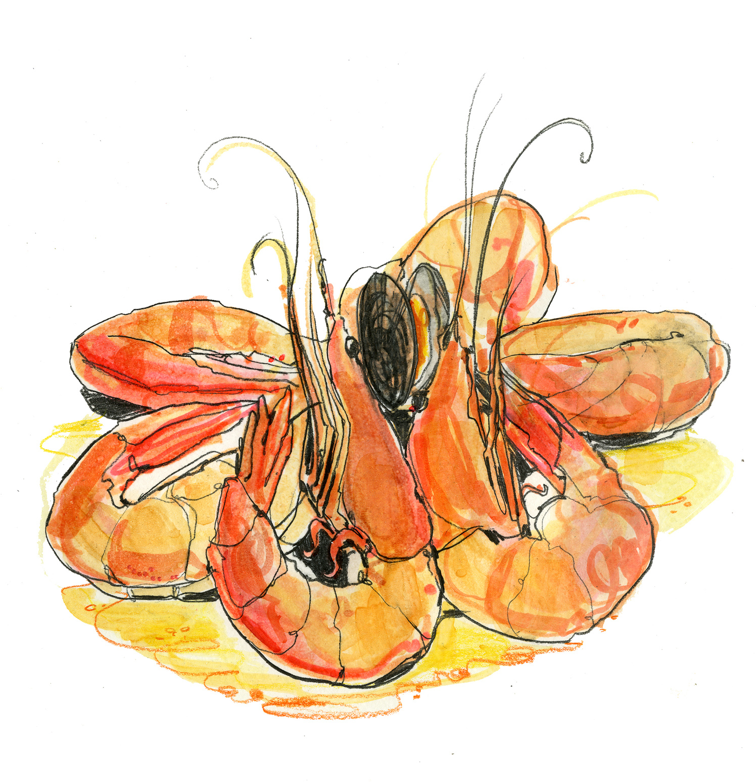 Gambas And Mussels Reportage