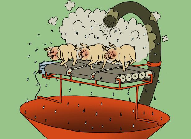 Baconsalt Poster 1
