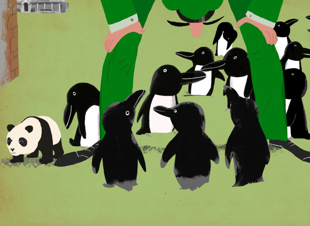 Mr Peek And The Misunderstanding At The Zoo Penguins