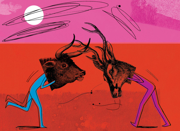 Political Stags The Guardian