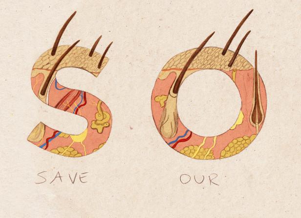 Save Our Skin.jpg