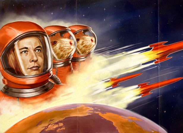 Bloomburg Elon Musk