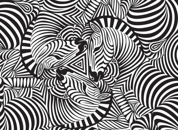 Zebra Print Apple iPhone