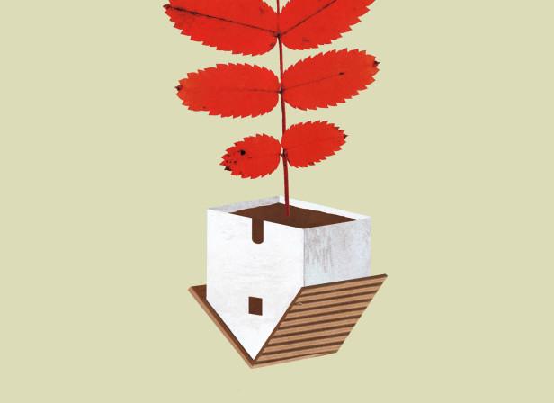 Poster-Botanic-Garden-of-Valencia-4.jpg