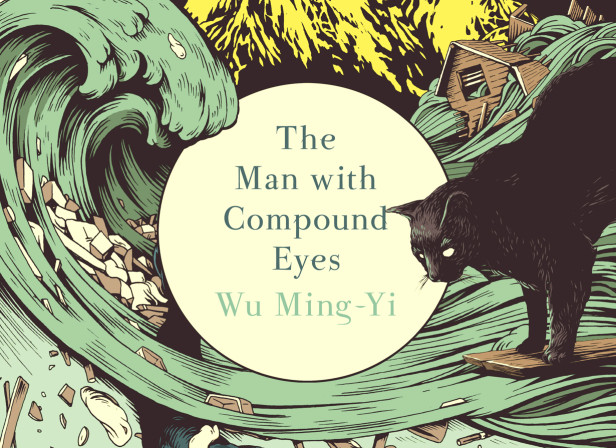 The Man with Compound Eyes Book Cover