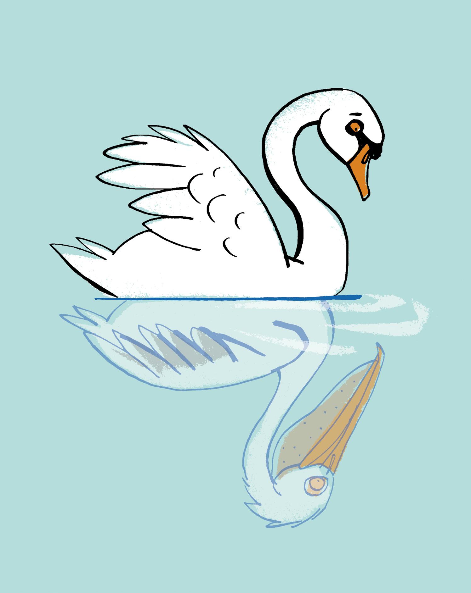 Distorted Self Image Swan
