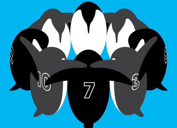 A Huddle Of Penguins