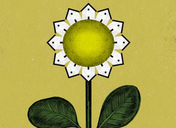 Postal-Spring-Botanic-Garden-of-Valencia.jpg