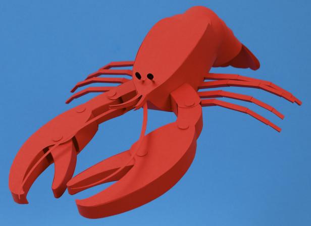 Lobster / Ted Baker