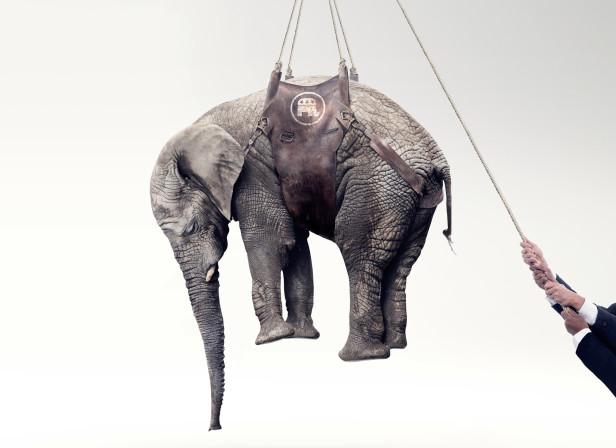 Fortune Elephant_TimeInc.jpg