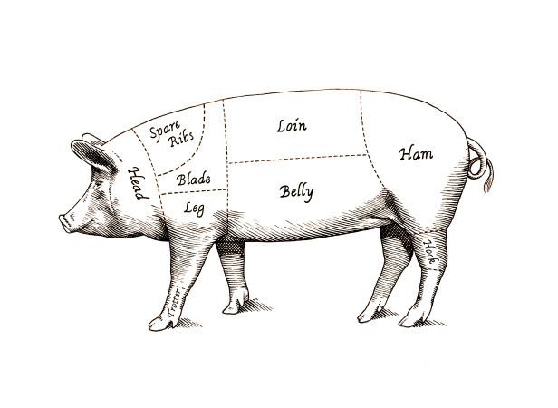 Morrison's_Pig.jpg