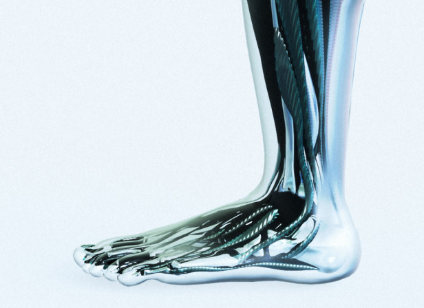 Leg Muscles / Mens Health Magazine