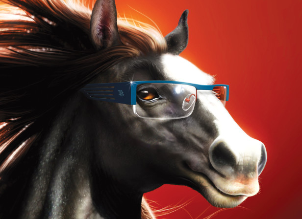Ted Baker Eyewear Horse