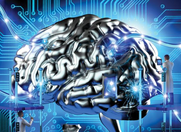 Brain / Focus Magazine