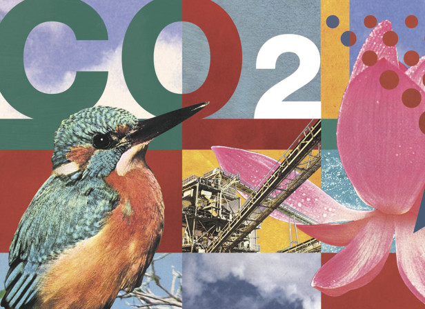BP CO2 Emissions