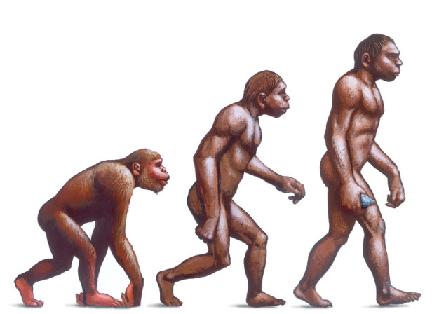 Evolution To Obesity The Economist