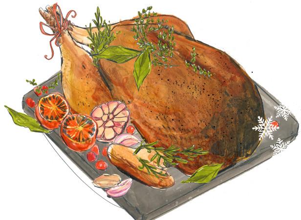 Ocado Turkey illustration.jpg