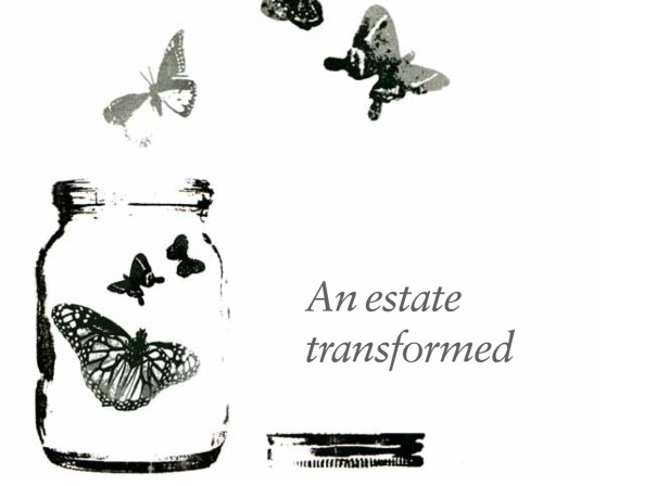 Estate / Strutt & Parker