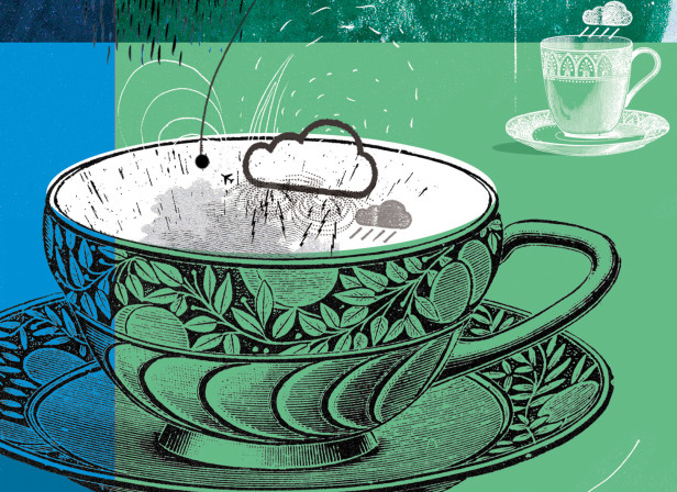 Storm In A Tea Cup The Guardian