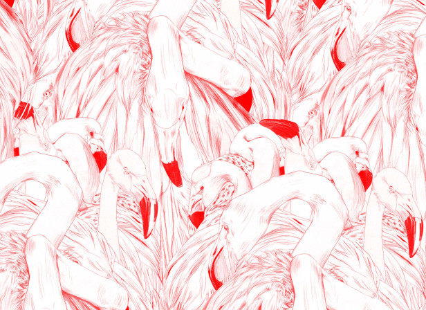 Wallpaper Flamingos