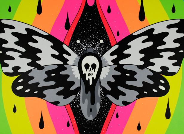 Moth in the Incubator