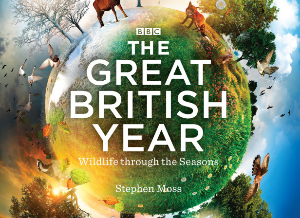 The Great British Year / BBC Books