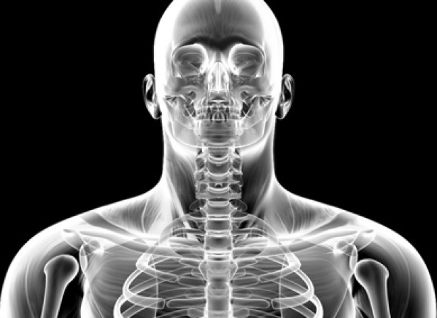 Weightlifter X-Ray
