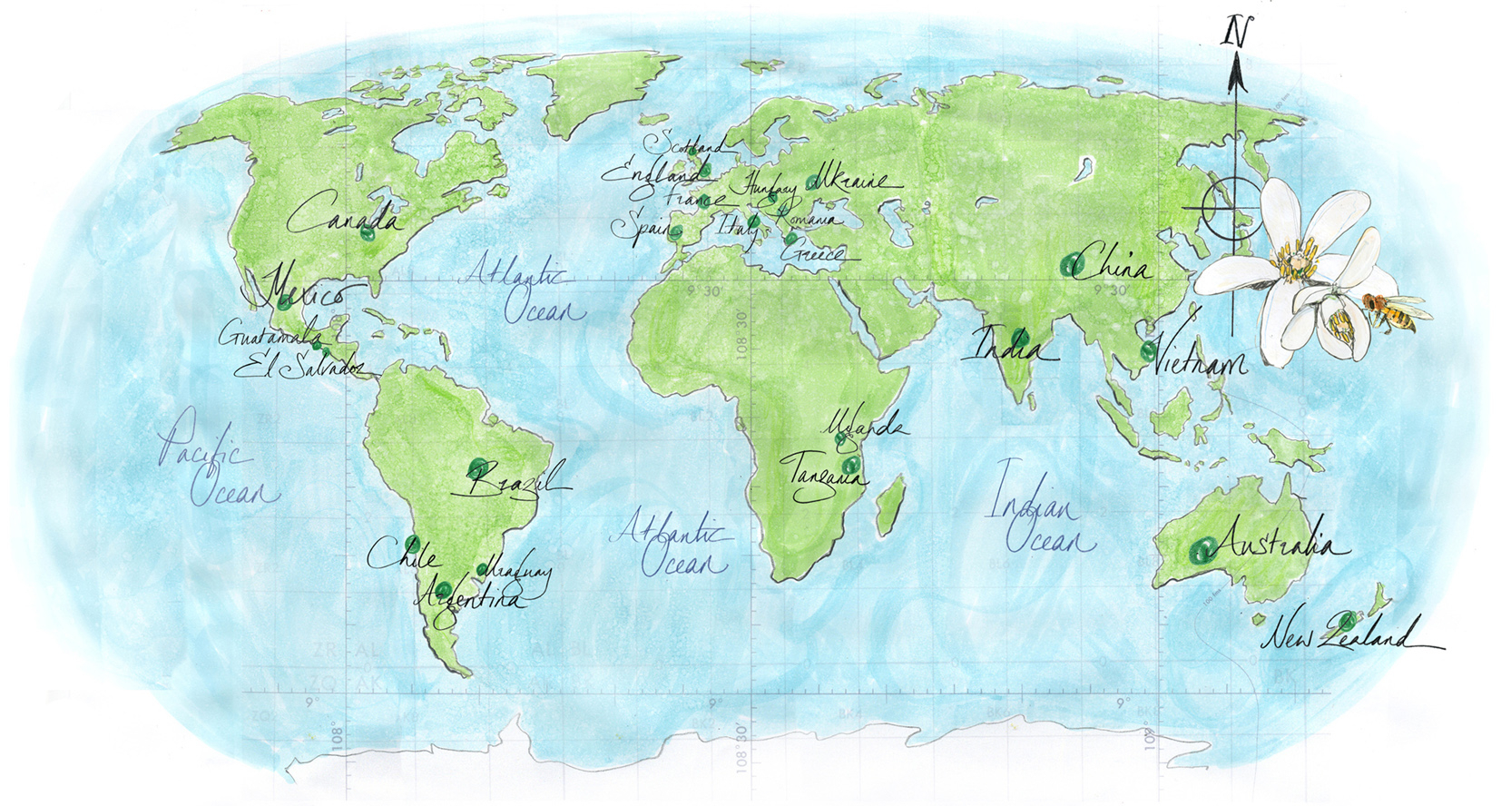 World Map Rowse Honey / The Branding Company