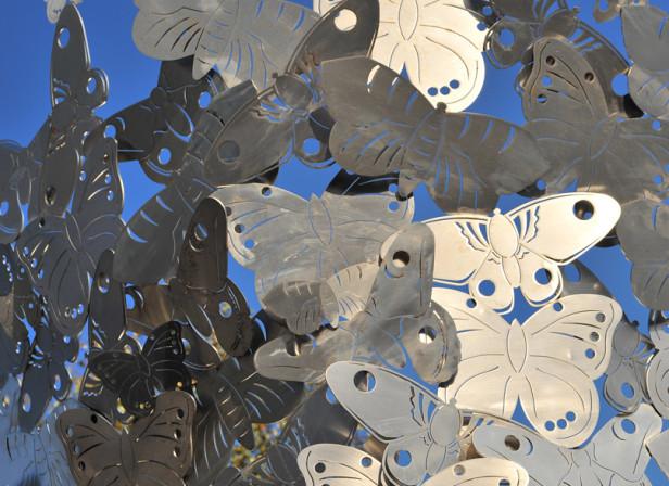 Silk Moths Public Sculpture Salmon Properties