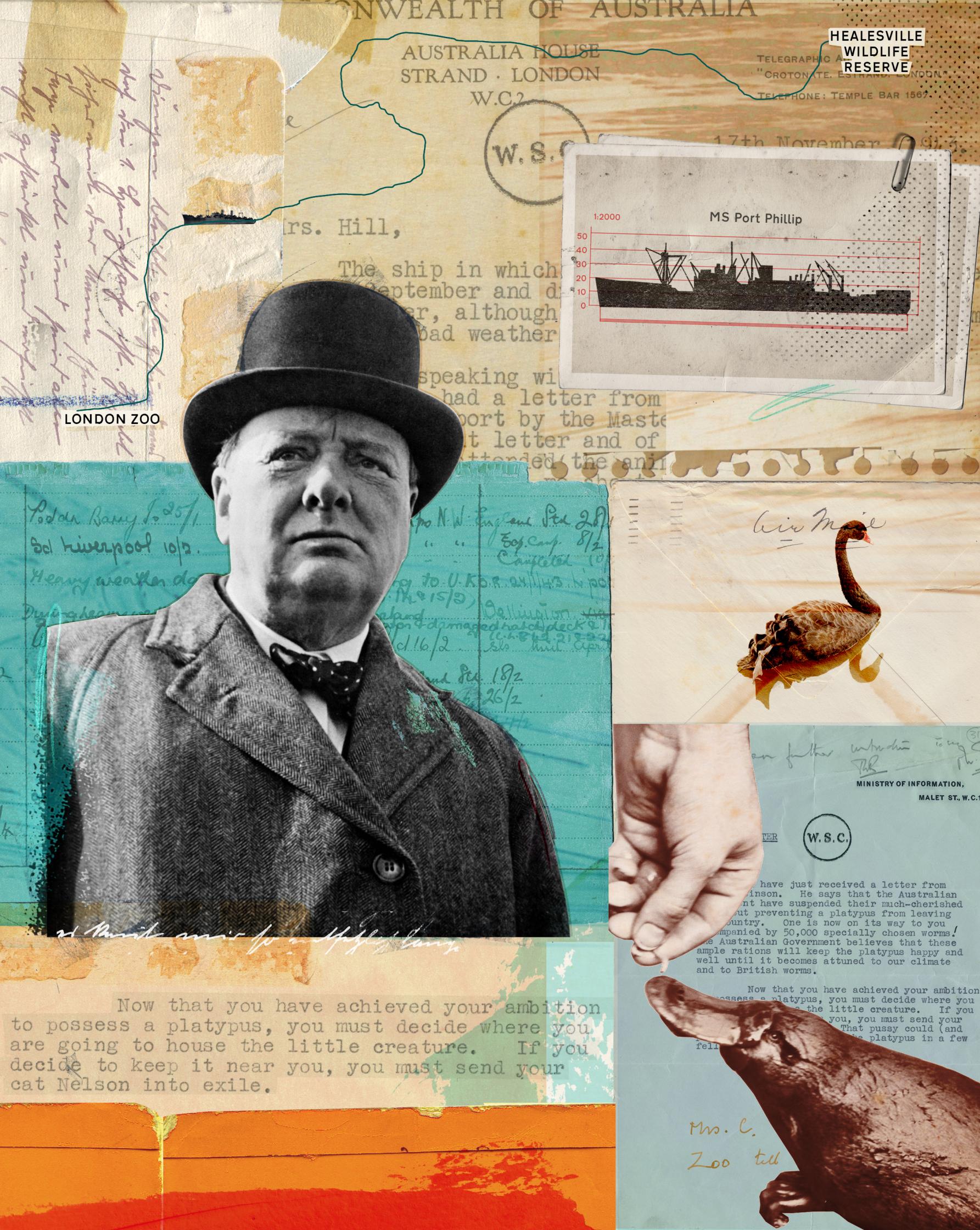 Hanson_Churchill's Platypus_opener_HRF.jpg