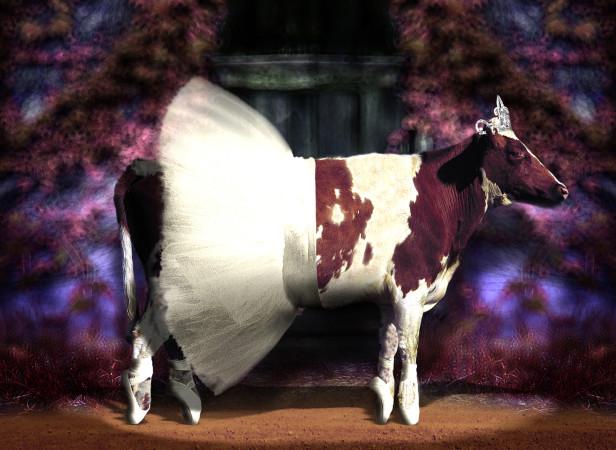 Ballerina Cow / Cow Planet
