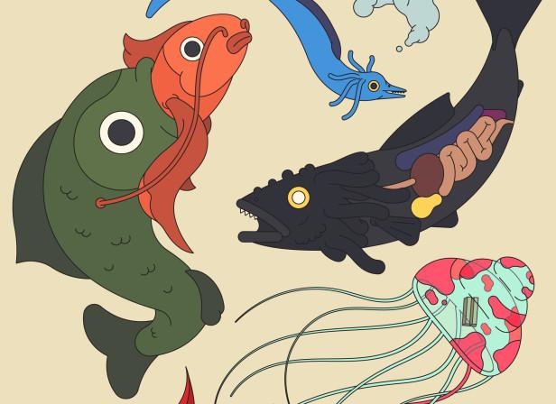 Mystical Fishing.jpg