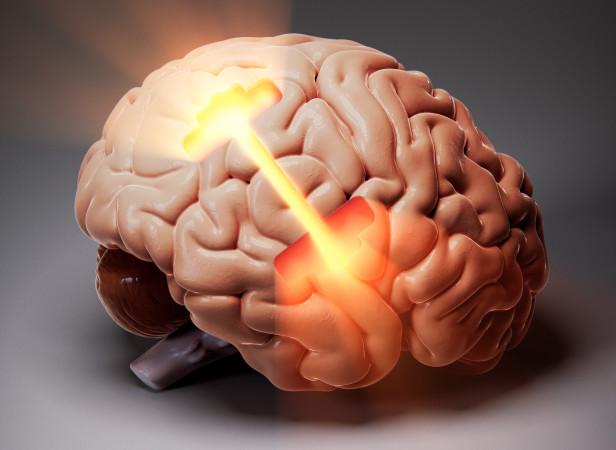 pcrowtherMen'sHealth Brain.jpg