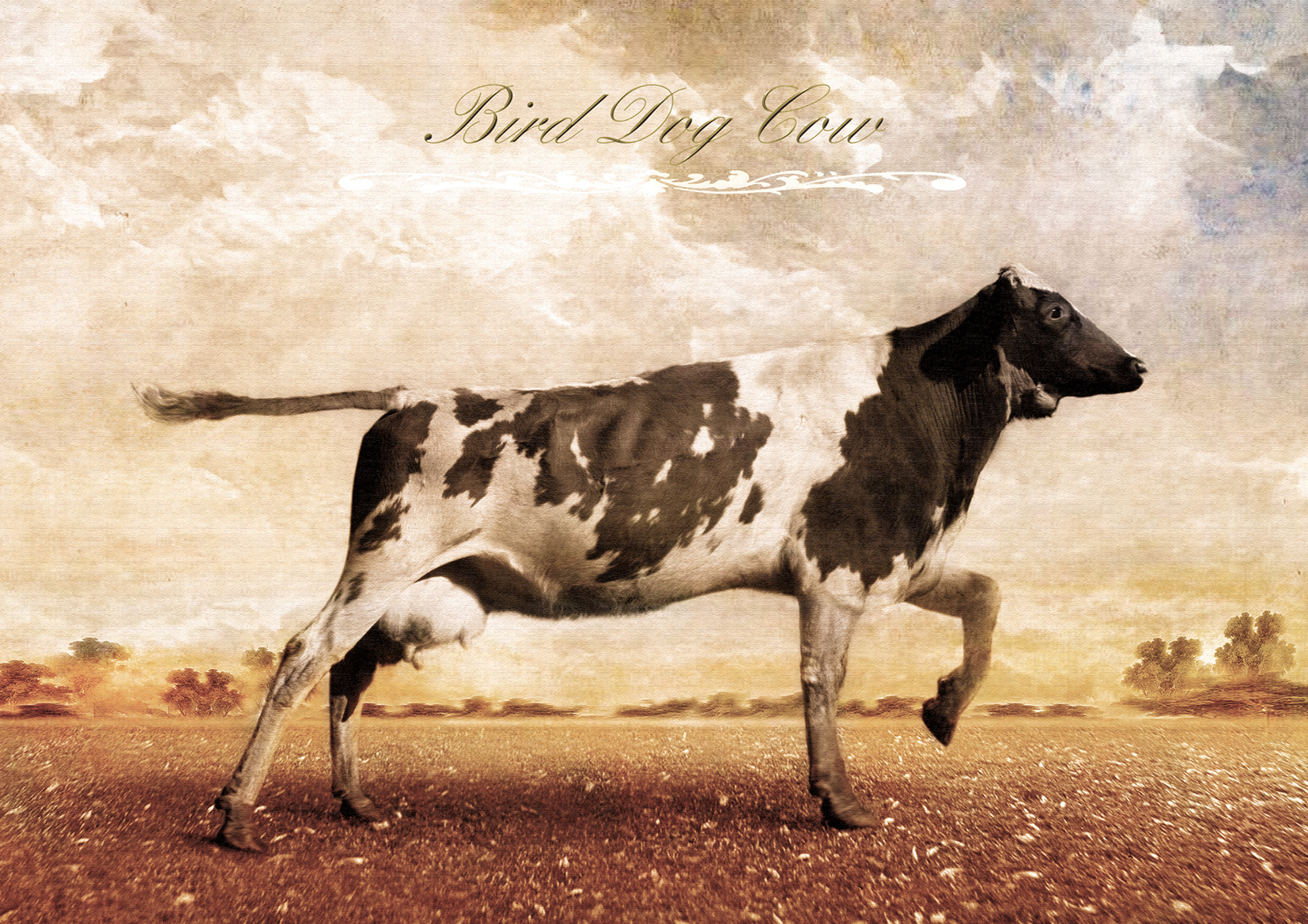 Bird Dog Cow Cow Planet
