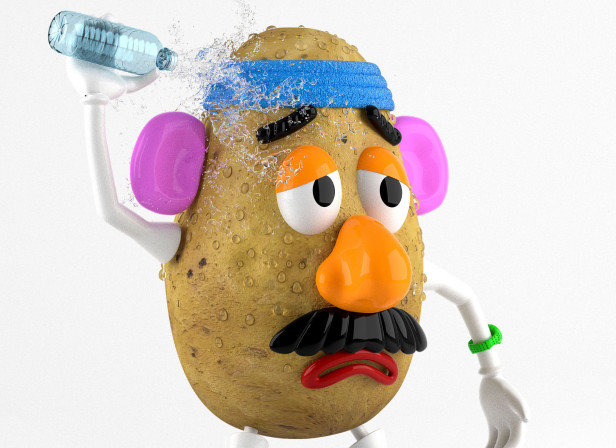 MR POTATO HEAD.jpg