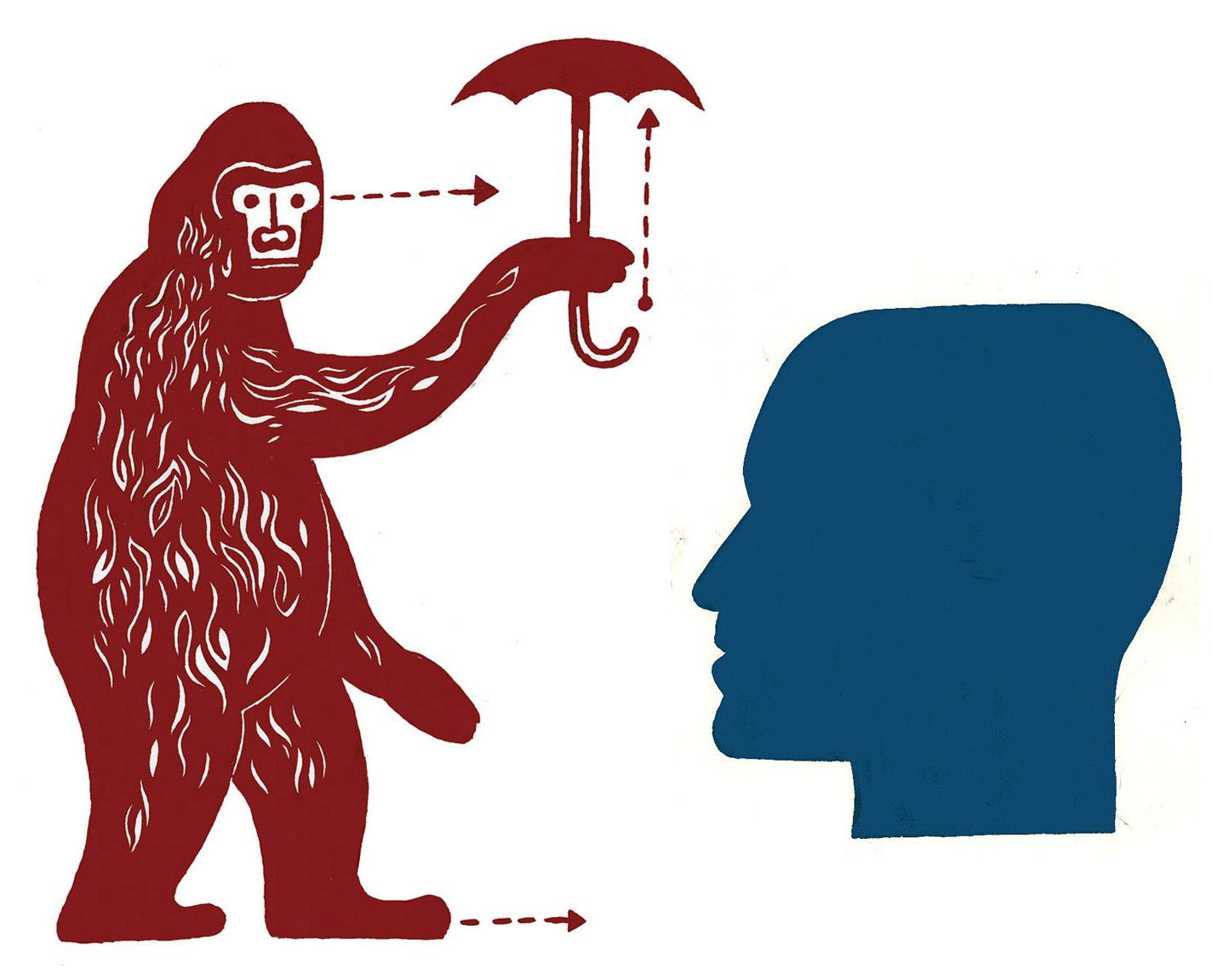 Rainy Gorilla