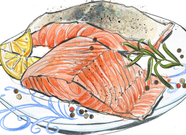 Ocado Salmon illustration.jpg