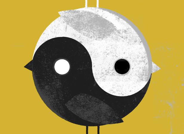 Yin Yang Bird
