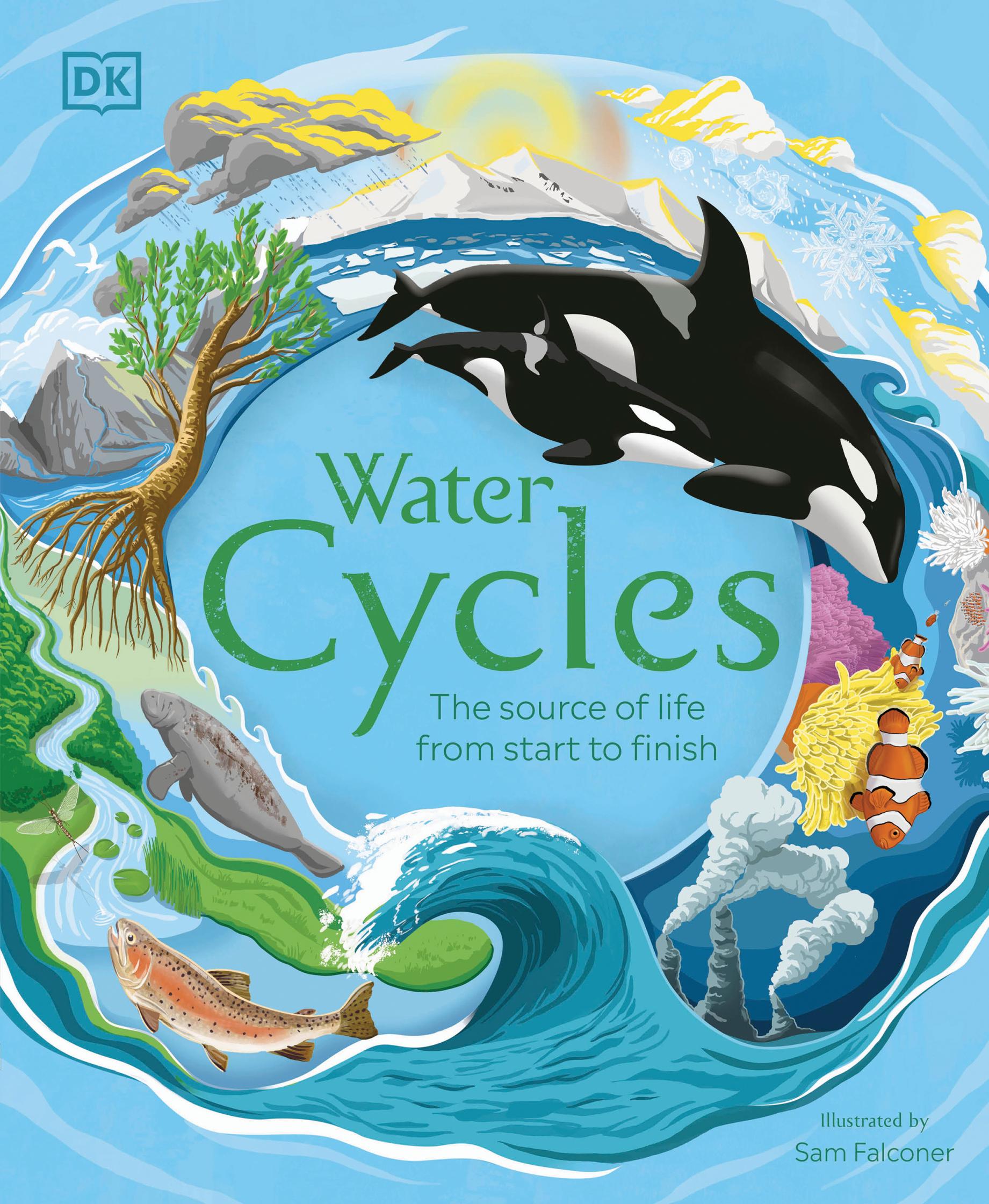 Water Cycles for DK.jpg