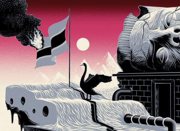 Black Swan 2 / Economia Magazine