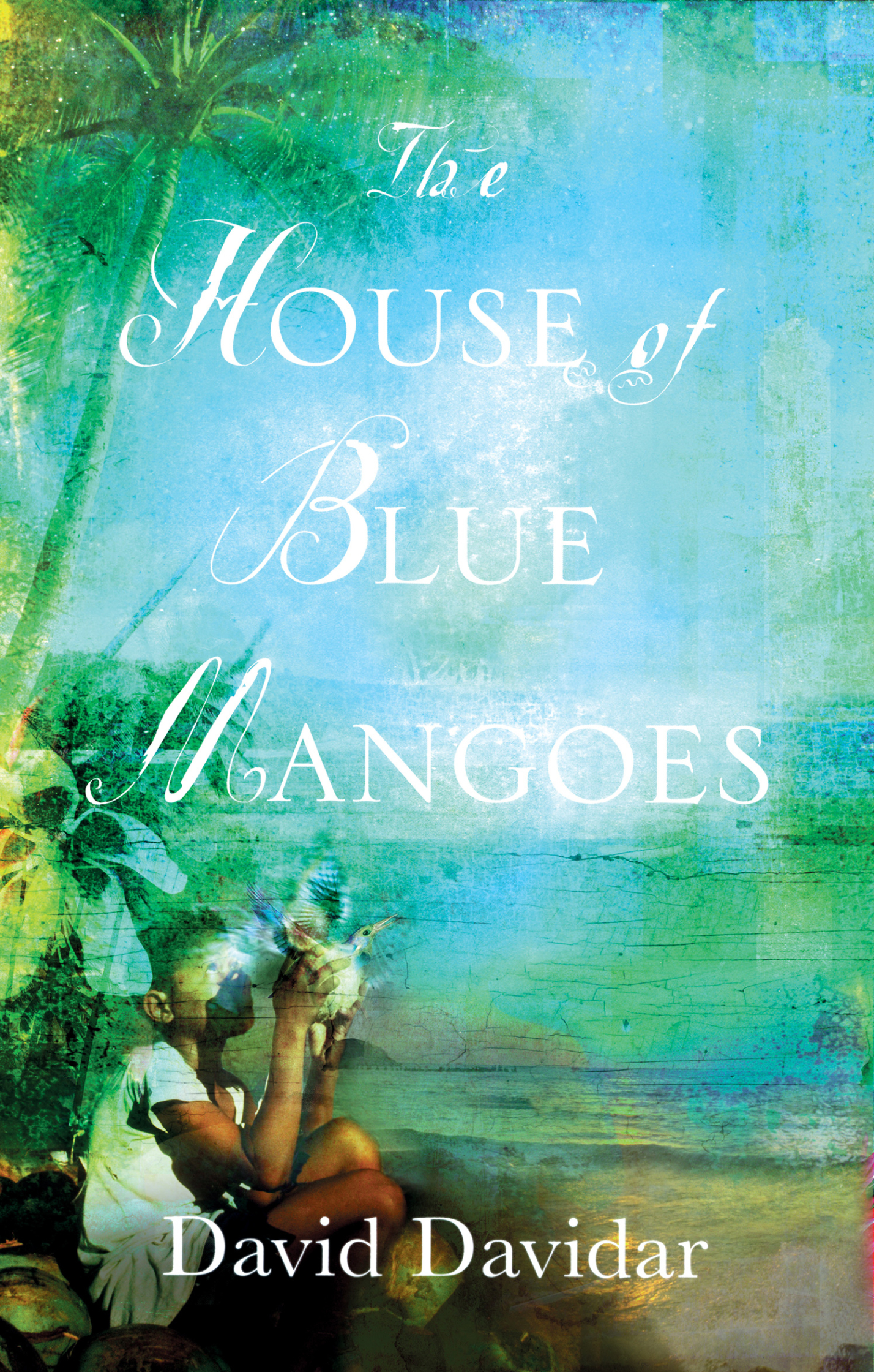 The House of Blue Mangoes W&N Books