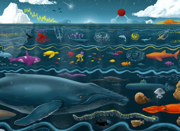 Oceans-Illustration-Cover.jpg
