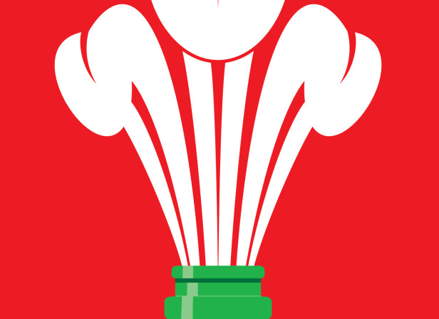 Welsh Rugby / The Big Issue