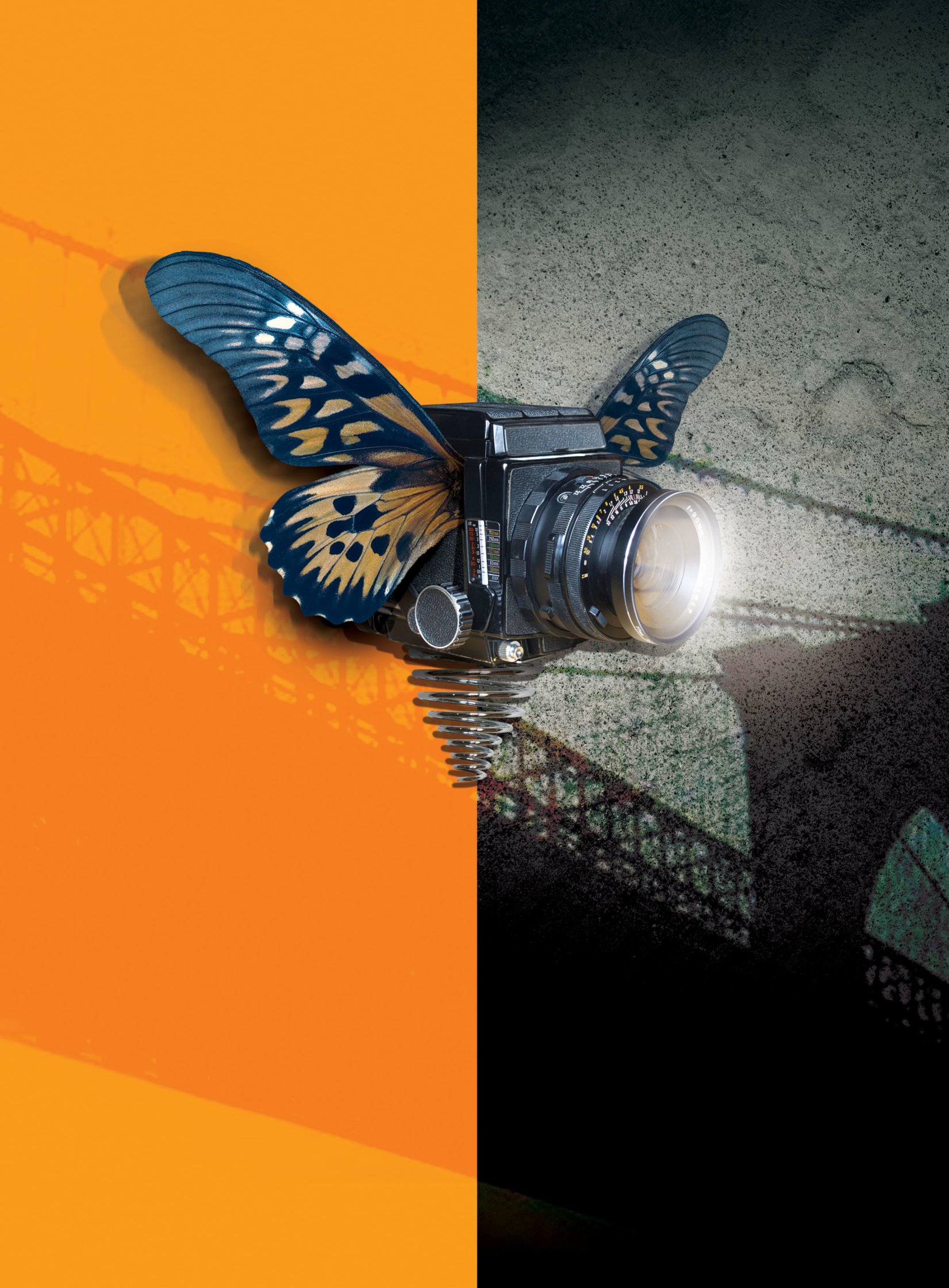 Photoville Festival poster.jpg